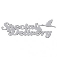 Special-Delivery-RWL105
