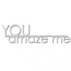 You-Amaze-Me-RWL511