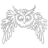 Owl-in-flight-WOW1722