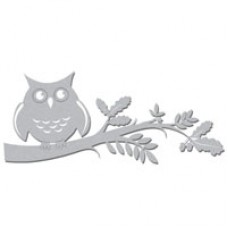 Owl-on-Branch-WOW1926