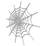 Spider-Web-WOW1956