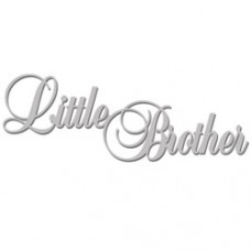 Little-Brother-WOW864