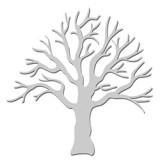 Bare-Tree-WOW1179