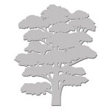 Gum-Tree-WOW1586
